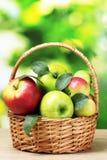 υγιής ώριμος μήλων bascet Στοκ φωτογραφίες με δικαίωμα ελεύθερης χρήσης