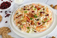 Υγιής Coleslaw σαλάτα σε ένα πιάτο Στοκ εικόνες με δικαίωμα ελεύθερης χρήσης