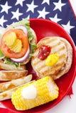 υγιής picnic διακοπών κατακόρ&upsil στοκ φωτογραφίες με δικαίωμα ελεύθερης χρήσης