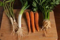 Υγιή λαχανικά Στοκ Φωτογραφία