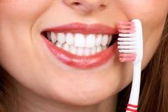 υγιή δόντια Στοκ Εικόνα