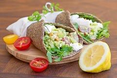Υγιή, ελεύθερα, φυτικά περικαλύμματα σιταριού Στοκ εικόνα με δικαίωμα ελεύθερης χρήσης