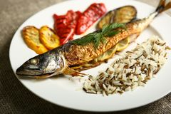 Υγιή και κατάλληλα τρόφιμα, ψημένα στη σχάρα ψάρια και λαχανικά Στοκ Φωτογραφίες