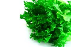 Υγιή και τρόφιμα διατροφής: πράσινη σαλάτα που απομονώνεται στο άσπρο υπόβαθρο Στοκ φωτογραφία με δικαίωμα ελεύθερης χρήσης