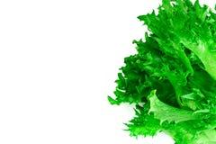 Υγιή και τρόφιμα διατροφής: πράσινη σαλάτα που απομονώνεται στο άσπρο υπόβαθρο Στοκ Εικόνες