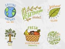 Υγιή λογότυπα οργανικής τροφής καθορισμένα ή ετικέτες και στοιχεία για τα πράσινα φυσικά προϊόντα λαχανικών χορτοφάγων και αγροκτ Στοκ φωτογραφία με δικαίωμα ελεύθερης χρήσης