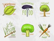 Υγιή λογότυπα οργανικής τροφής καθορισμένα ή ετικέτες και στοιχεία για τα πράσινα φυσικά προϊόντα λαχανικών χορτοφάγων και αγροκτ Στοκ Εικόνες