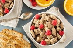 Υγιή ολόκληρα τεμαχισμένα σίτος δημητριακά Στοκ φωτογραφία με δικαίωμα ελεύθερης χρήσης