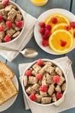 Υγιή ολόκληρα τεμαχισμένα σίτος δημητριακά Στοκ Εικόνα