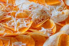Υγιή σπιτικά Plantain τσιπ με το τυρί στοκ φωτογραφία με δικαίωμα ελεύθερης χρήσης