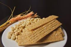 Υγιή τρόφιμα, εναλλακτικά τρόφιμα, ξηρό ψωμί πίτουρου και spikelet των λυκίσκων σε ένα άσπρο πιάτο στοκ εικόνες με δικαίωμα ελεύθερης χρήσης