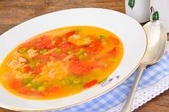 Υγιή τρόφιμα: Λαχανικά σούπας ψαριών Στοκ εικόνες με δικαίωμα ελεύθερης χρήσης