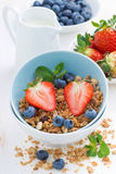 Υγιή τρόφιμα - granola, φρέσκες μούρα και κανάτα του γάλακτος, κινηματογράφηση σε πρώτο πλάνο Στοκ εικόνες με δικαίωμα ελεύθερης χρήσης