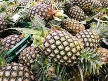 Υγιή φρούτα ανανά στοκ φωτογραφία με δικαίωμα ελεύθερης χρήσης
