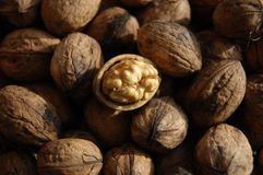 Υγιή φυσικά ξύλα καρυδιάς τροφίμων Στοκ φωτογραφία με δικαίωμα ελεύθερης χρήσης