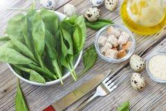 Υγιή φύλλα σπανακιού μωρών προγευμάτων φρέσκα Συστατικά για τη σαλάτα σπανακιού με τα αυγά ορτυκιών Στοκ φωτογραφία με δικαίωμα ελεύθερης χρήσης