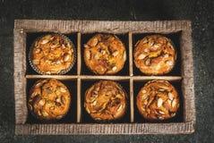 Υγιή Muffins κολοκύθας Στοκ Εικόνες