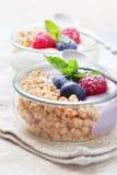 Υγιή verrines γιαουρτιού Στοκ Εικόνες