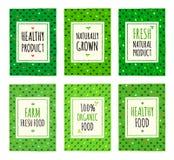 Υγιείς κάρτες σχεδίων οργανικής τροφής Στοκ Εικόνες