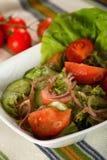 υγιείς ντομάτες σαλάτας Στοκ φωτογραφίες με δικαίωμα ελεύθερης χρήσης