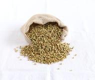 Υγιείς σπόροι κορίανδρου τροφίμων Στοκ Εικόνα