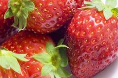 υγιείς φράουλες Στοκ Φωτογραφία