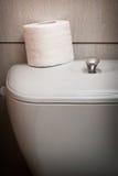 Υγιεινός ρόλος χαρτιού τουαλέτας στο WC στοκ εικόνες με δικαίωμα ελεύθερης χρήσης