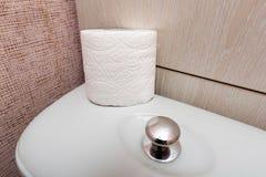 Υγιεινός ρόλος χαρτιού τουαλέτας στο WC στοκ φωτογραφία με δικαίωμα ελεύθερης χρήσης