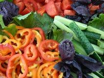 Υγιεινός φάτε Στοκ Εικόνες
