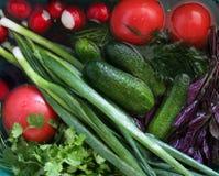 Υγρά λαχανικά και πράσινα σε έναν νεροχύτη Στοκ φωτογραφίες με δικαίωμα ελεύθερης χρήσης