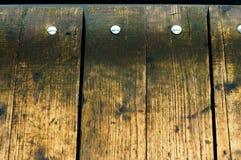 Υγρά πατώματα σκληρού ξύλου Στοκ εικόνα με δικαίωμα ελεύθερης χρήσης