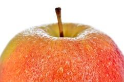 Υγρά, ώριμα μήλα που απομονώνονται σε ένα άσπρο υπόβαθρο Στοκ φωτογραφίες με δικαίωμα ελεύθερης χρήσης