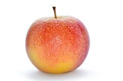 Υγρά, ώριμα μήλα που απομονώνονται σε ένα άσπρο υπόβαθρο Στοκ Φωτογραφίες