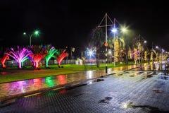Υγρή οδός πόλεων τη νύχτα, με το ζωηρόχρωμο διακοσμητικό φωτισμό στα δέντρα Στοκ εικόνες με δικαίωμα ελεύθερης χρήσης