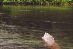 Υγρή πέτρα από την ακτή λιμνών στοκ εικόνες