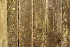 Υγροί πίνακες στο πάτωμα Στοκ Εικόνα