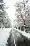 Υγρός για τους πεζούς οδικός τρόπος ασφάλτου στην πόλη Στοκ Εικόνες