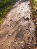 Υγρός διάβασης πεζών περίπατος τρόπων φθινοπώρου πατωμάτων πορειών καφετής Στοκ εικόνα με δικαίωμα ελεύθερης χρήσης