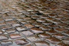 Υγρός λιθοστρωμένος cobble δρόμος μετά από μια θύελλα βροχής στοκ εικόνες