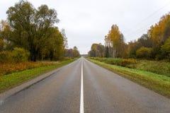 Υγρός δρόμος ασφάλτου με τις αντανακλάσεις ήλιων Στοκ φωτογραφία με δικαίωμα ελεύθερης χρήσης