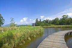 υγρότοπος πάρκων του Χο&gamm στοκ φωτογραφία με δικαίωμα ελεύθερης χρήσης