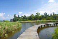 υγρότοπος πάρκων του Χο&gamm Στοκ εικόνες με δικαίωμα ελεύθερης χρήσης