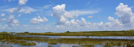 Υγρότοπος της Φλώριδας Εθνικό πάρκο Everglades στη Φλώριδα, ΗΠΑ στοκ φωτογραφίες