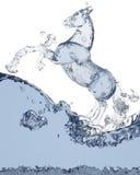 υγρό αλόγων Στοκ φωτογραφία με δικαίωμα ελεύθερης χρήσης