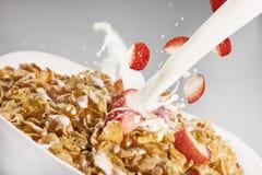 Υγρό δημητριακών Στοκ φωτογραφία με δικαίωμα ελεύθερης χρήσης