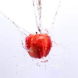 Υγρό μήλο στοκ φωτογραφία με δικαίωμα ελεύθερης χρήσης