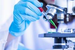 Υγρό μείωσης επιστημόνων petri στο πιάτο στοκ φωτογραφία με δικαίωμα ελεύθερης χρήσης