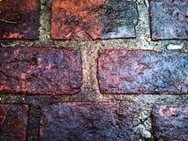 Υγρό πάτωμα τούβλων Στοκ Φωτογραφία