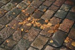 Υγρό παλαιό πεζοδρόμιο με τα φύλλα φθινοπώρου Στοκ φωτογραφία με δικαίωμα ελεύθερης χρήσης