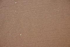 Υγρό υπόβαθρο παραλιών άμμου Στοκ Φωτογραφίες